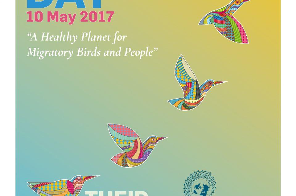 Flugwege – Internationaler Weltzugvogeltag 12. – 13. Mai 2017