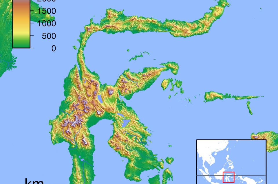 Warum verschwindet der Wald auf Sulawesi?