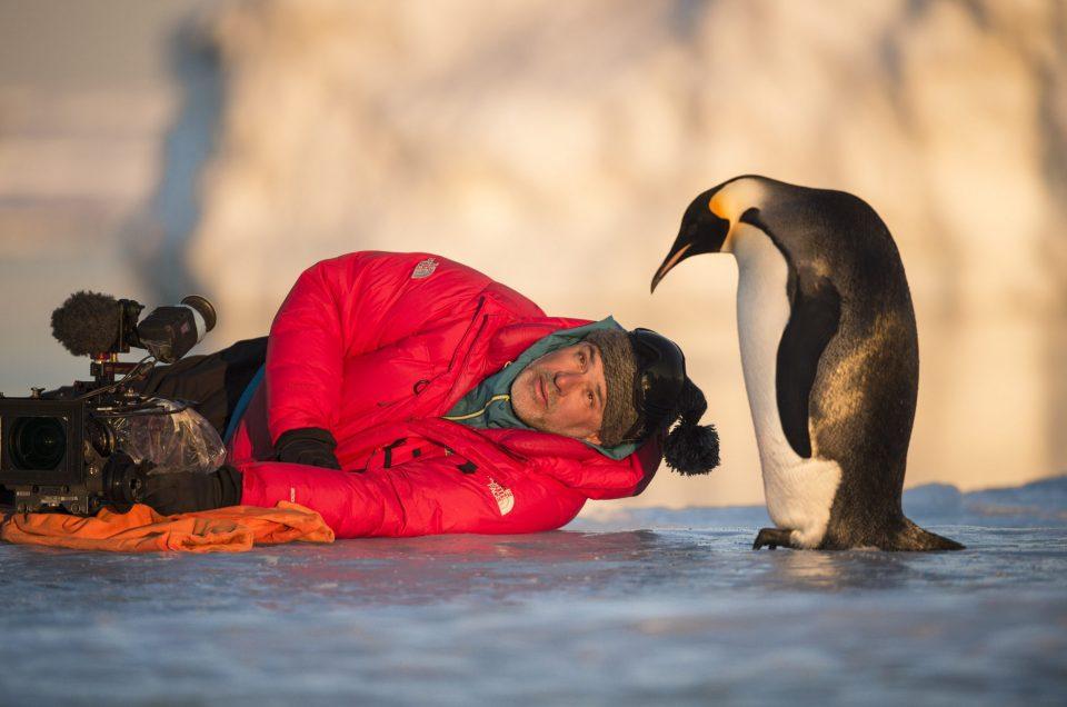 Antarctica – Ausstellung im Übersee Museum Bremen