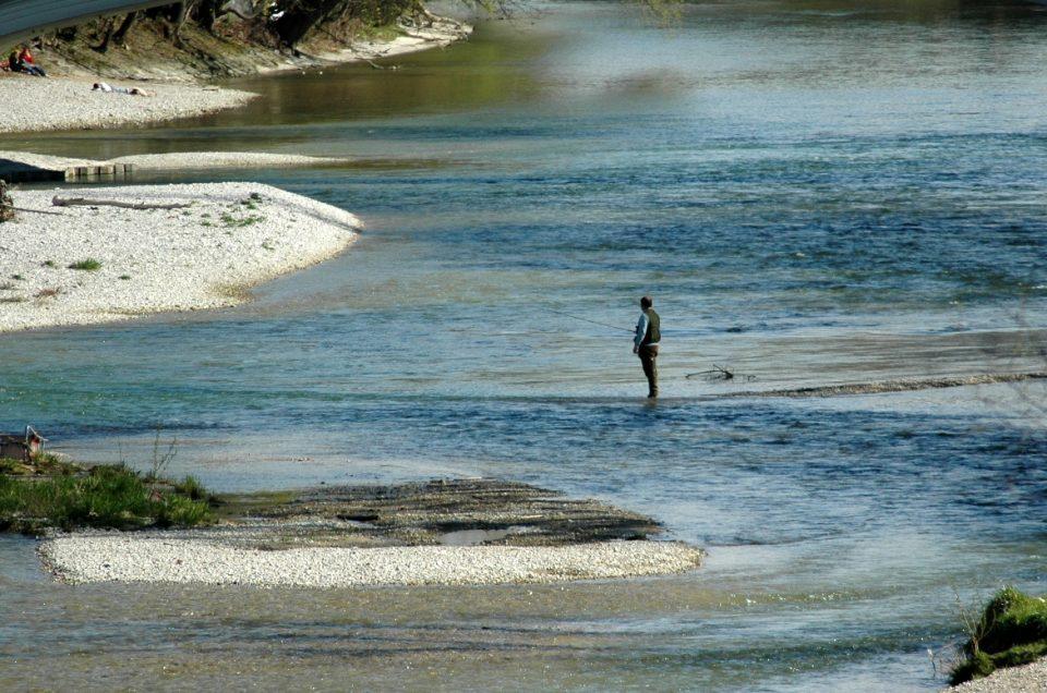 Ökologisches Desaster an der Isar