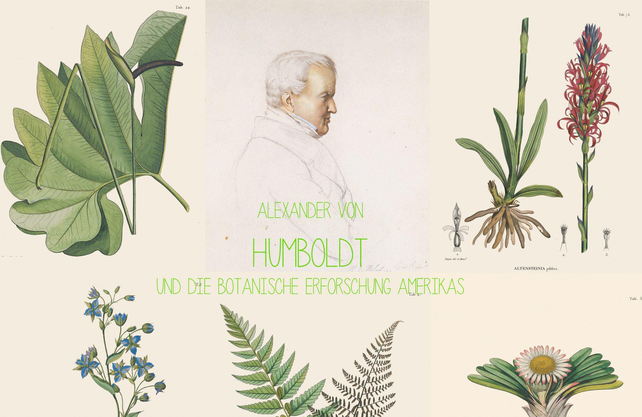 Alexander Von Humboldt Und Die Botanische Erforschung